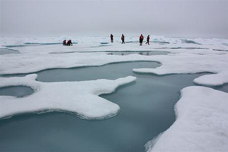 Icepeople