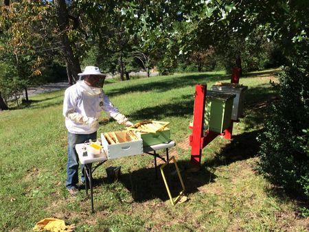 Erik the beekeeper